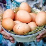 Женщина держит яйца в руках