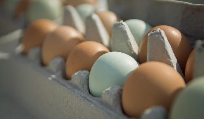 Яйца в ячейках