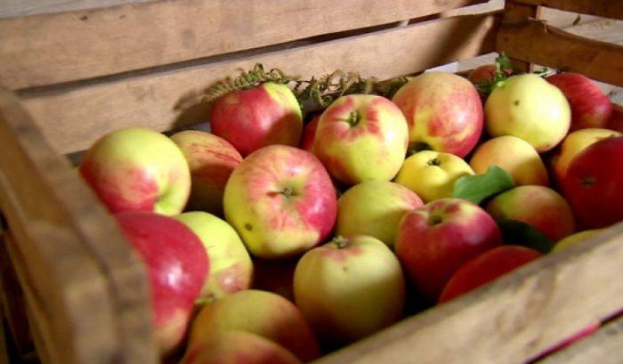 Яблоки в деревянном ящике
