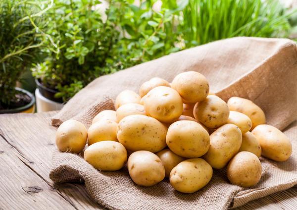Чистый картофель на мешке