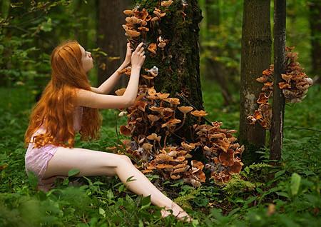 Женщина собирающая грибы с дерева