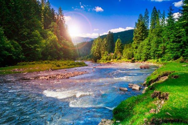 Горная река на солнце