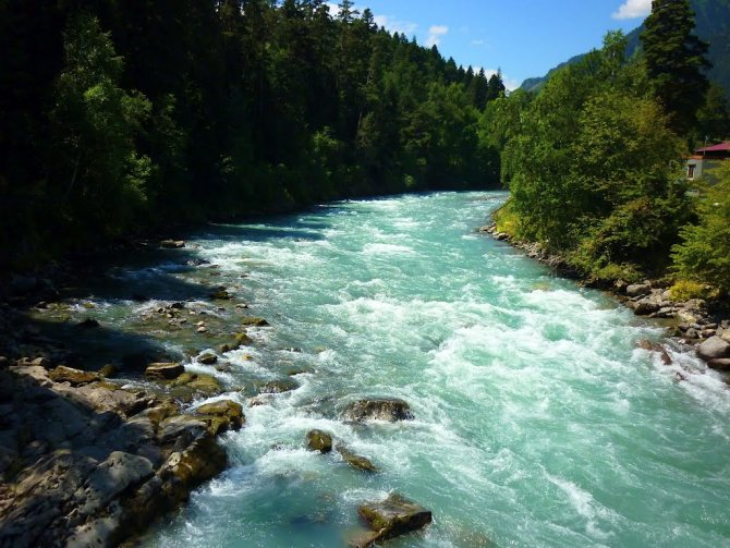 Бурлящая река в окружении леса и каменных пород