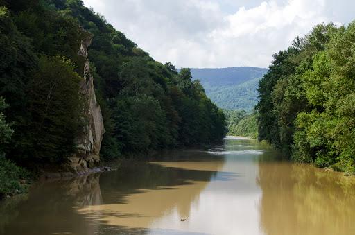 Мутная река на солнце в окружении лесов и гор