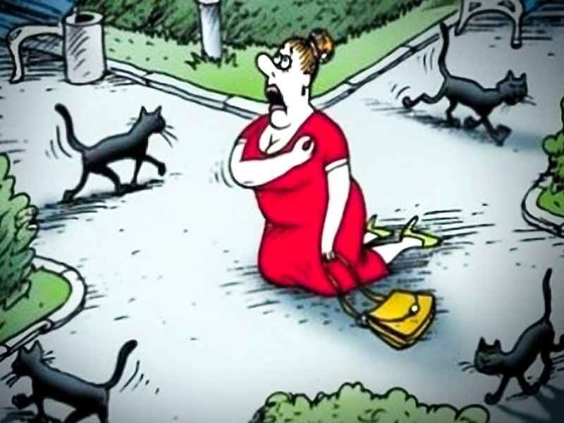 """Карикатура """"Женщина, крестящаяся на коленях на перекрестке в окружении переходящих дорогу черных котов"""""""